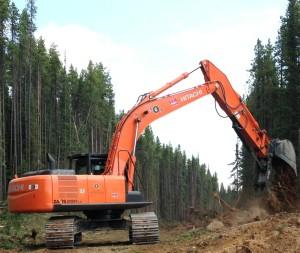 Forestry Excavator